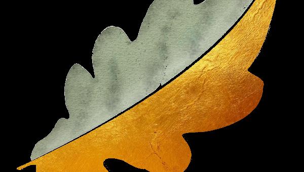 La feuille de chêne